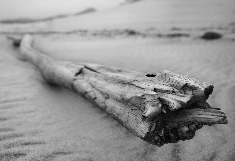 wood copy.jpg