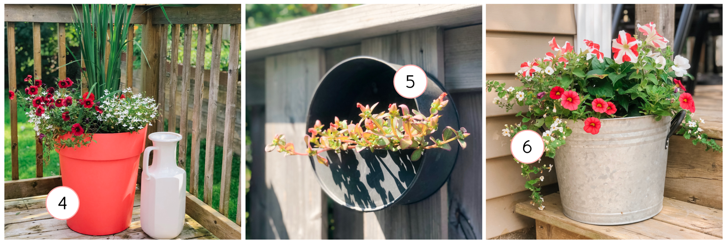 4.   Red Harmony Tall Planter    / 5.    Round Metal Wall Planter    / 6. Flowers from Kent Garden Centre