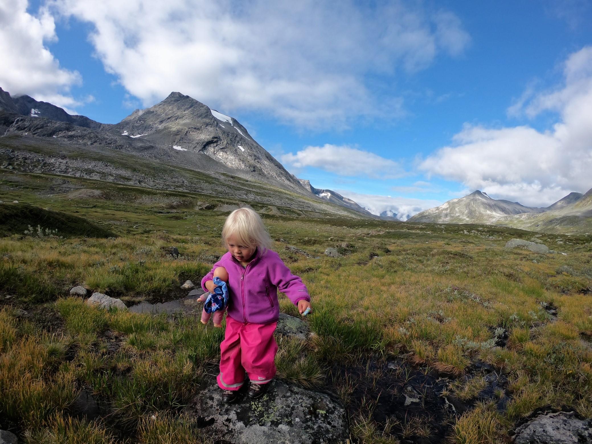 Mina vandrer i fjellet.jpg