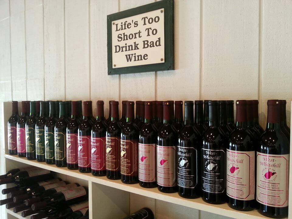 Rows of Wine Bottles.jpg