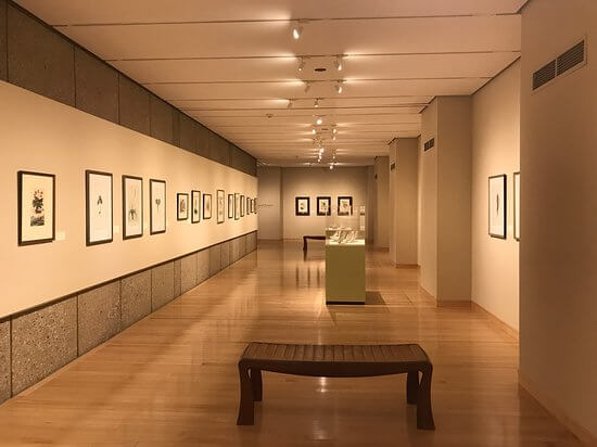 Huntington Museum of Art 2.jpg