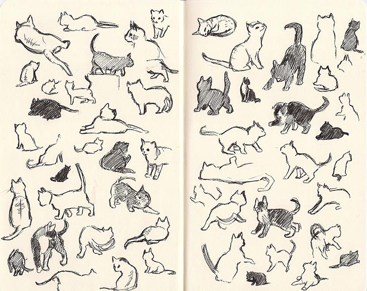 KittenCamSketches_72.jpg