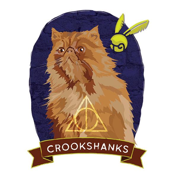 Crookshanks.jpg