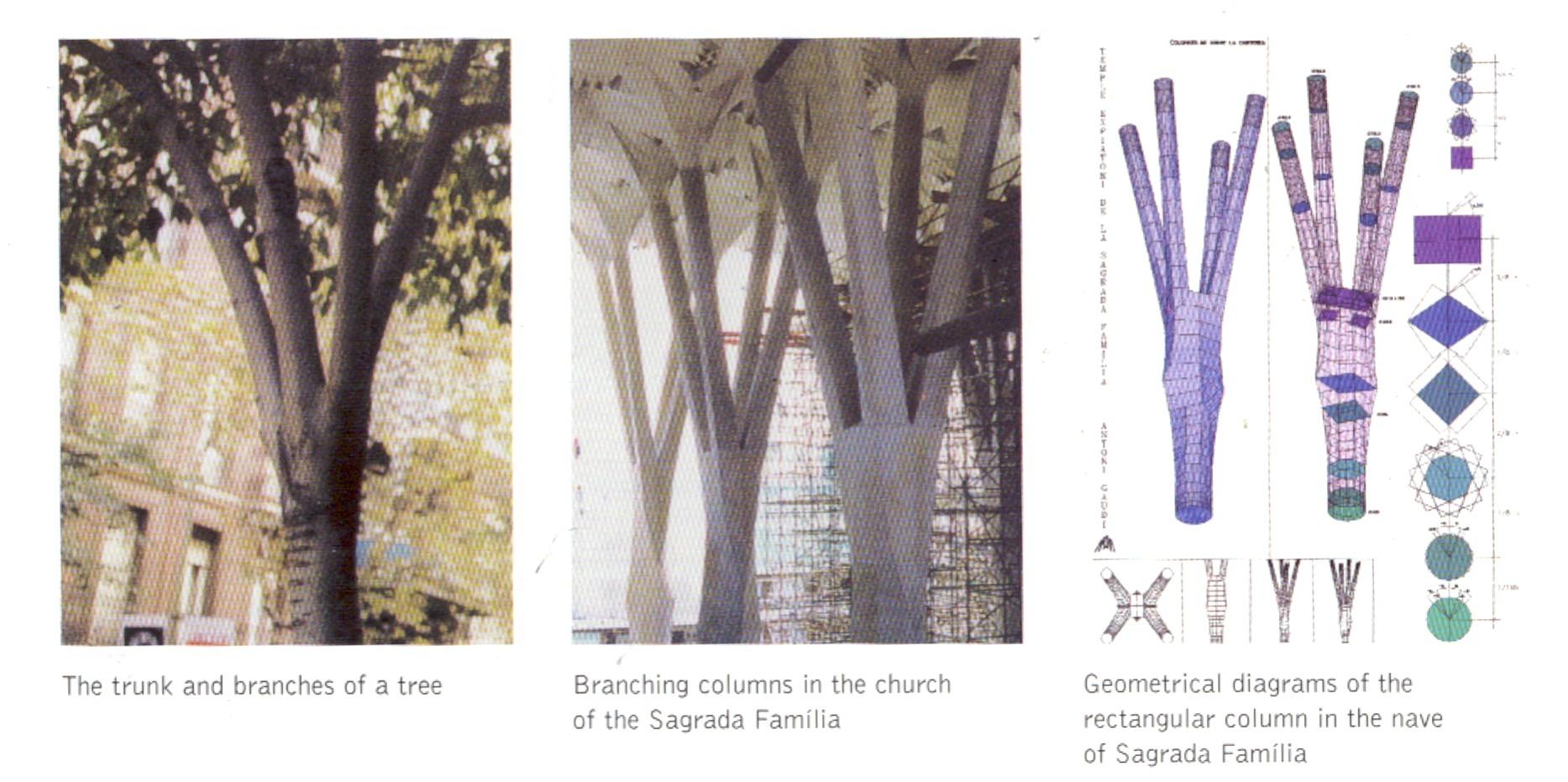 Antonio Gaudi, structural studies for the Sagrada Familia (from Gaudi: Exploring Form, 2002)