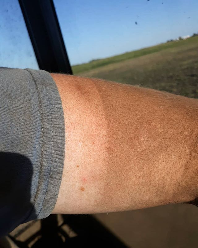 Now that Fall has begun, we are at the peak of Farmer Tans! We were rocking these dirt covered tan lines to end the summer by drilling in our wheat and rye crops for next year.  Feel free to share with us how you show off your hard work!  #centralillinois #silvertreebeerspirits #whiskeyseeds #farmfriday #farming #farmerstan