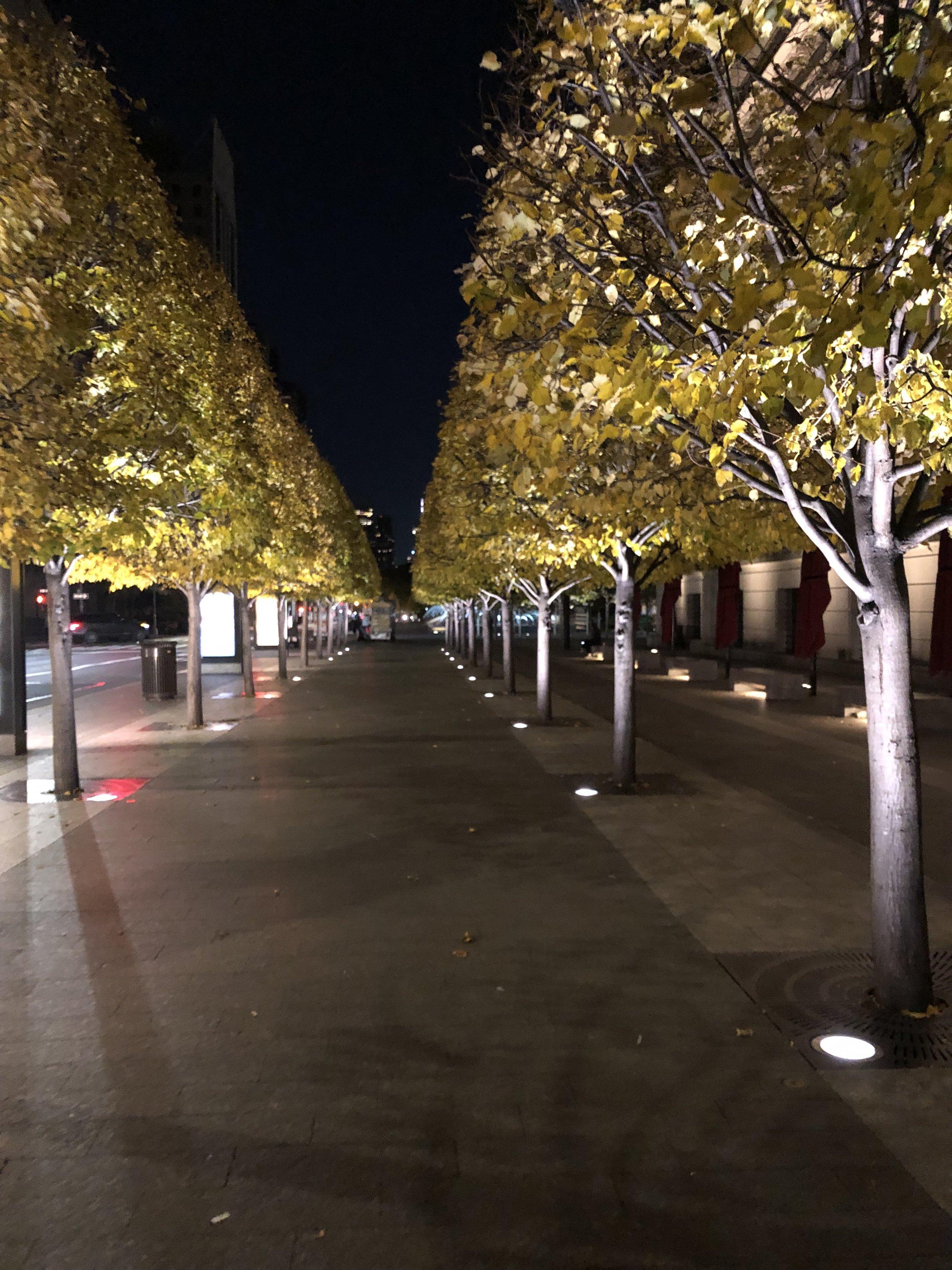A stroll through NYC at night