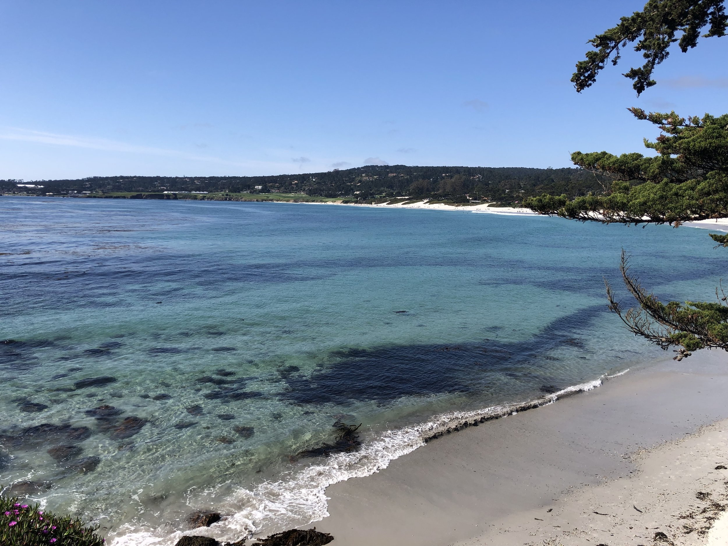 Beach at Carmel