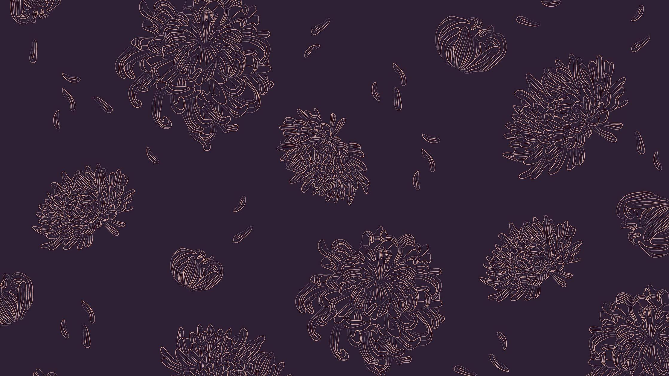 Chysanthemum_Illustration_Branding.jpg
