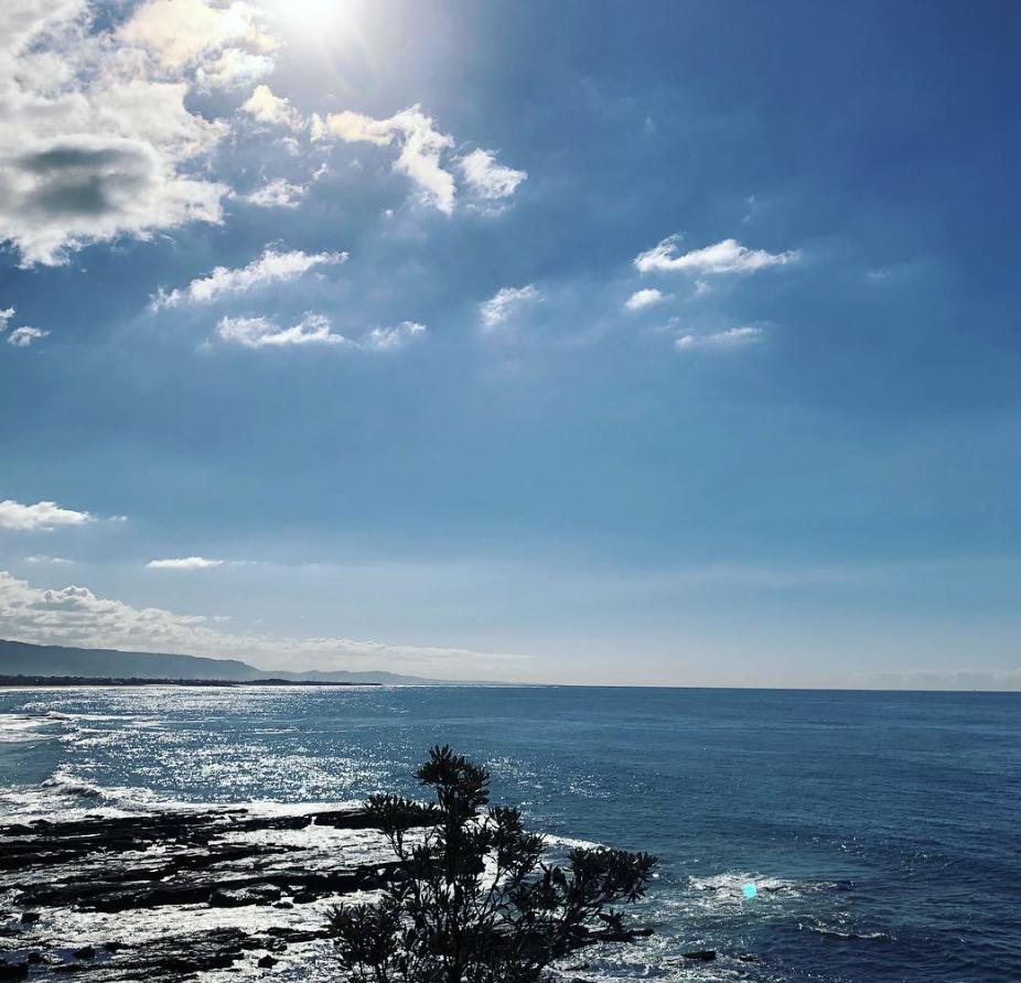 illawarra coast coal coast cov.jpg