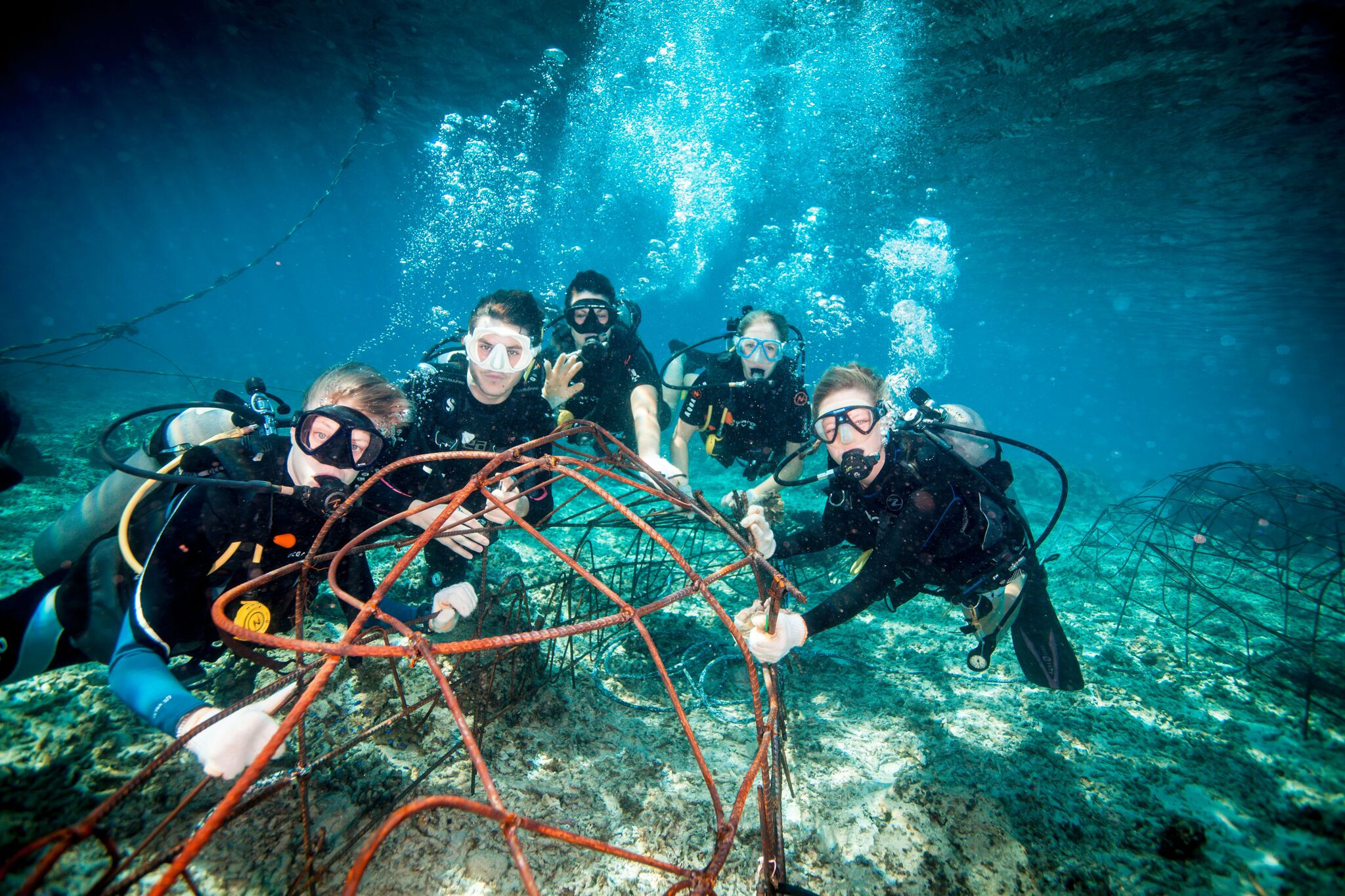 Building better coral reef