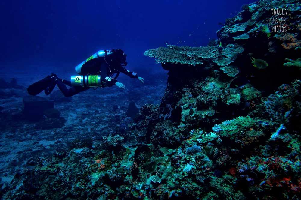 AN - Coral Ridge - reduced.jpg