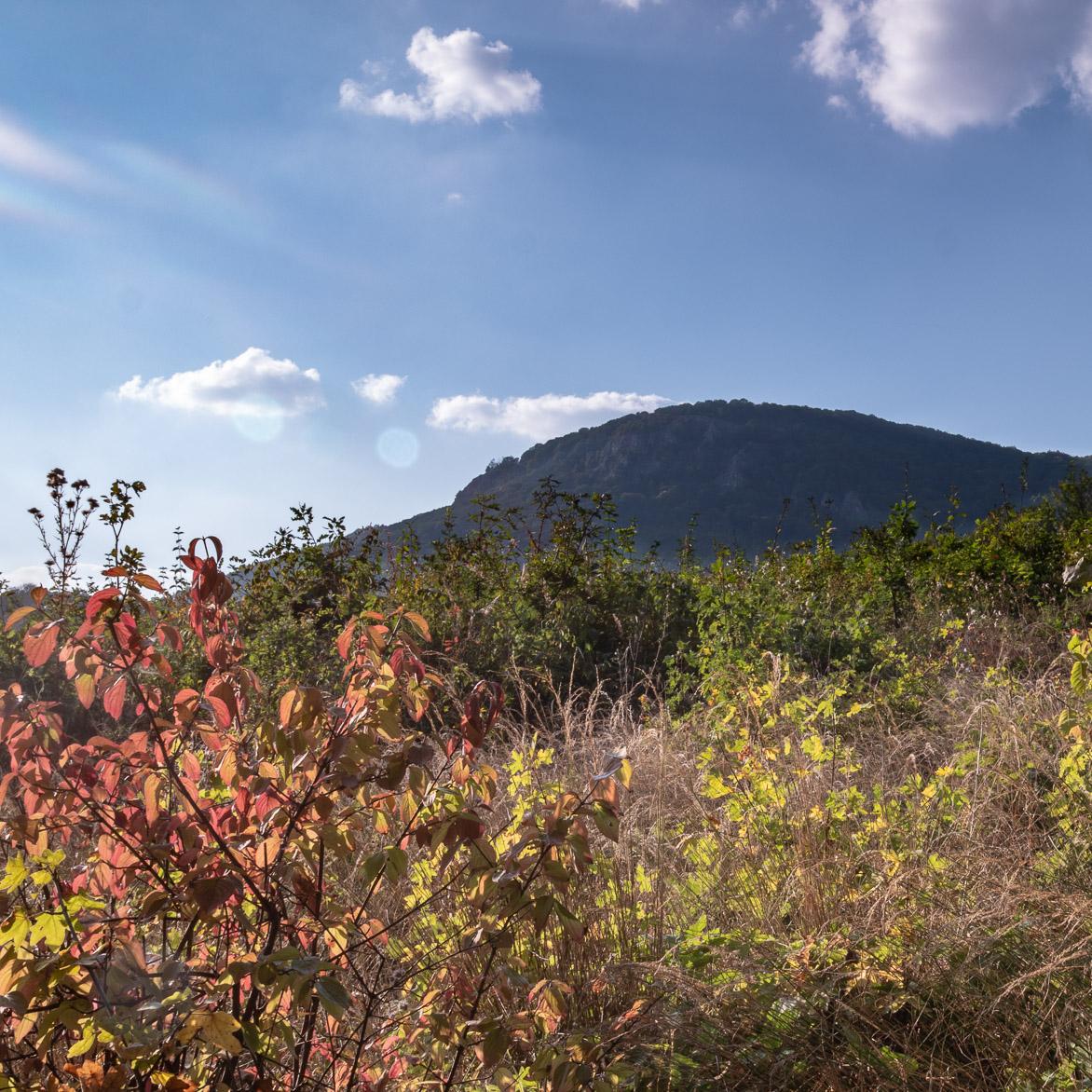 Bükki National Park