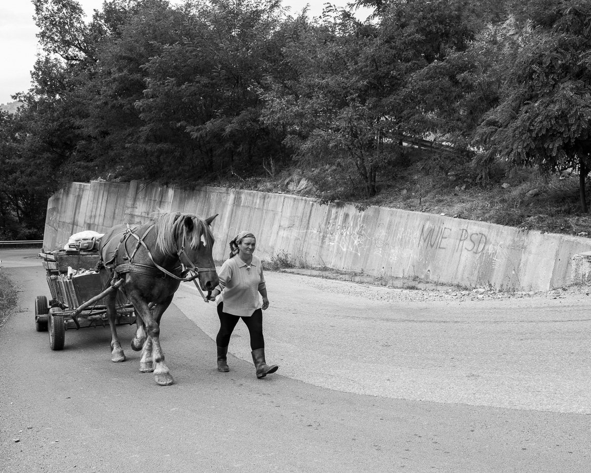 A man and wife round the corner. They are transporting logs on horse and cart we stop for a chat.