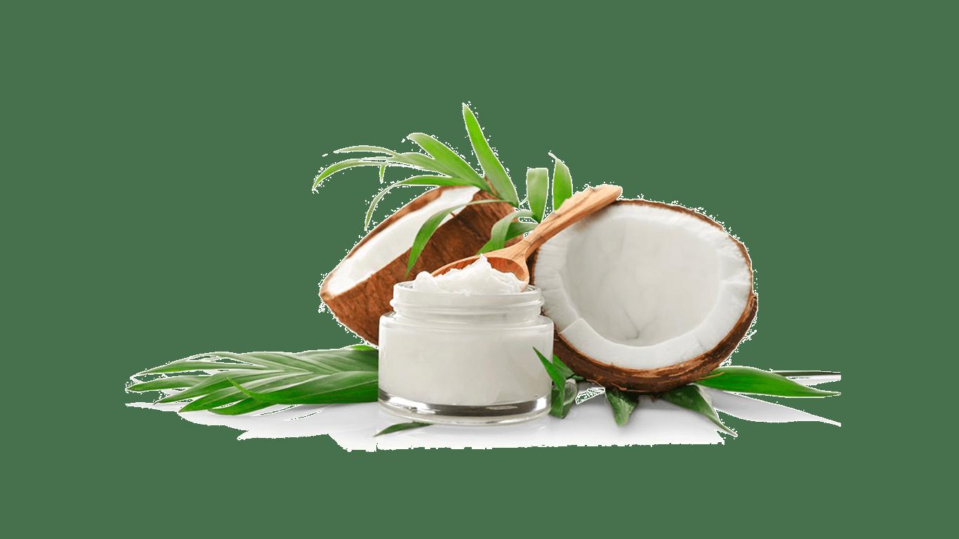 Schnauziis Kokos