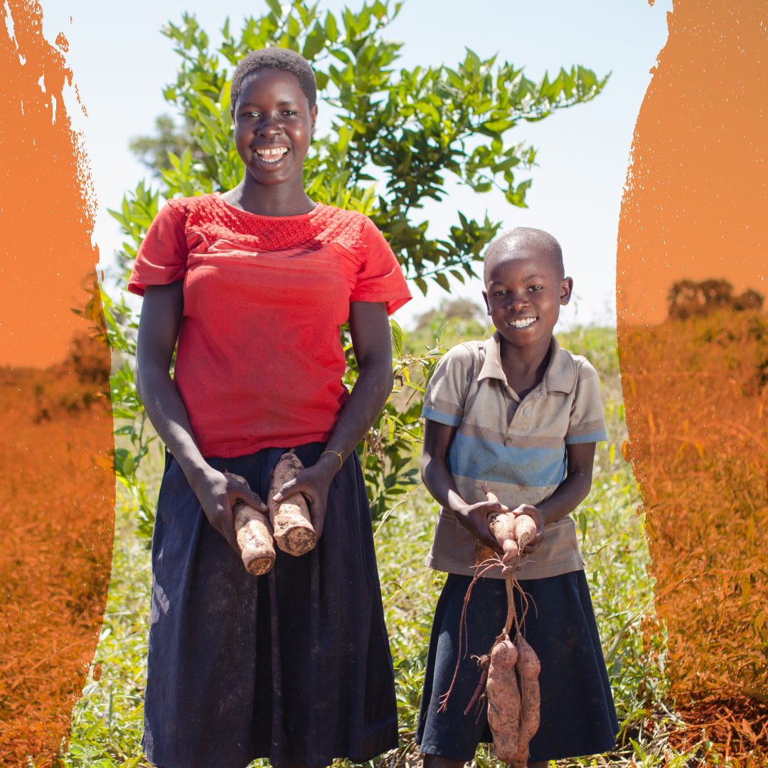 Uganda - Dig into Farm Africa's projects in Uganda.