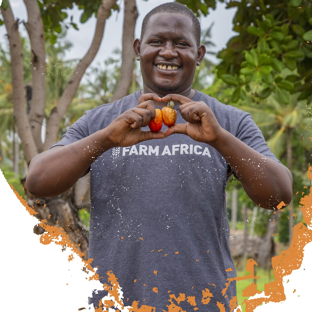 Cracking Kenya's cashew nut industry - Farm Africa is breathing life into the country's flagging cashew nut industry.Learn about the project