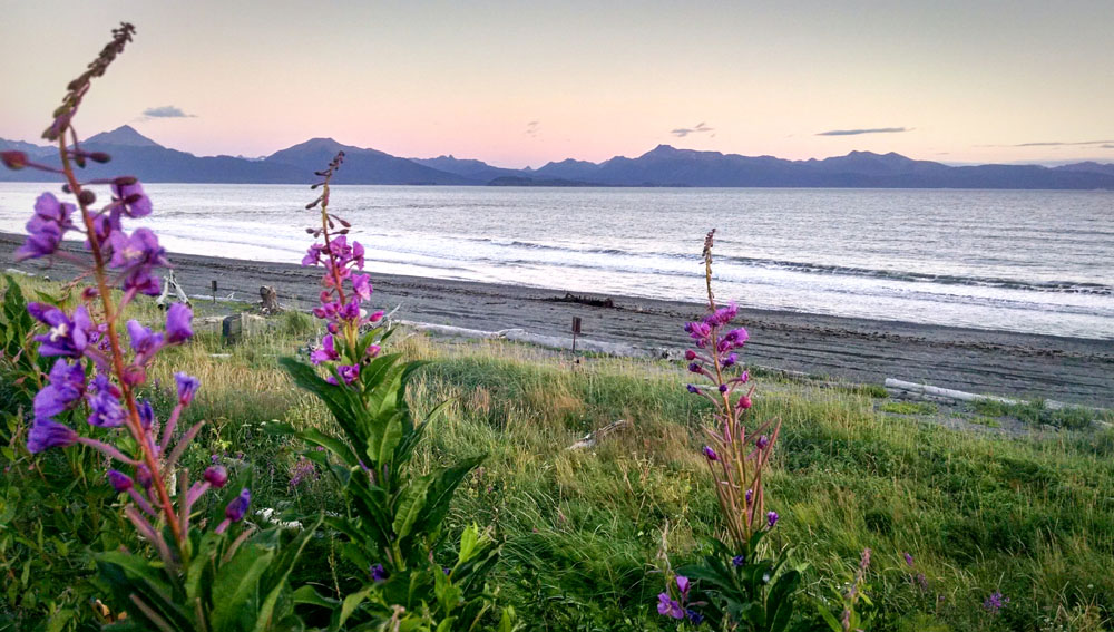 Artist Gone Wild - Alaska offers unique opportunities for artists to engage in wilderness based artist residencies.