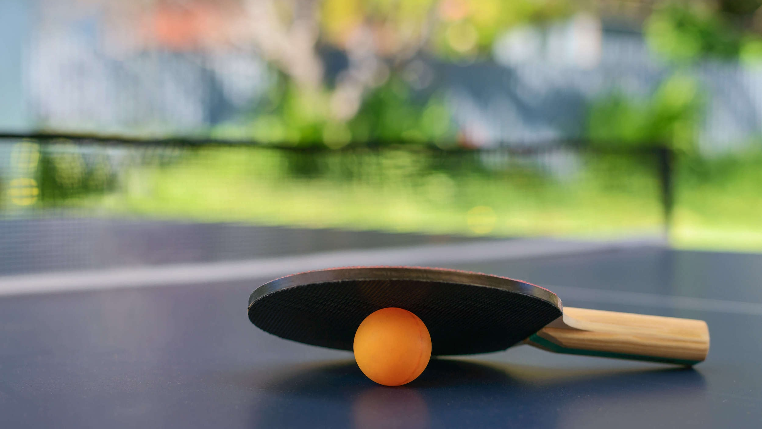 Table Tennis - Fancy a game of ping pong?