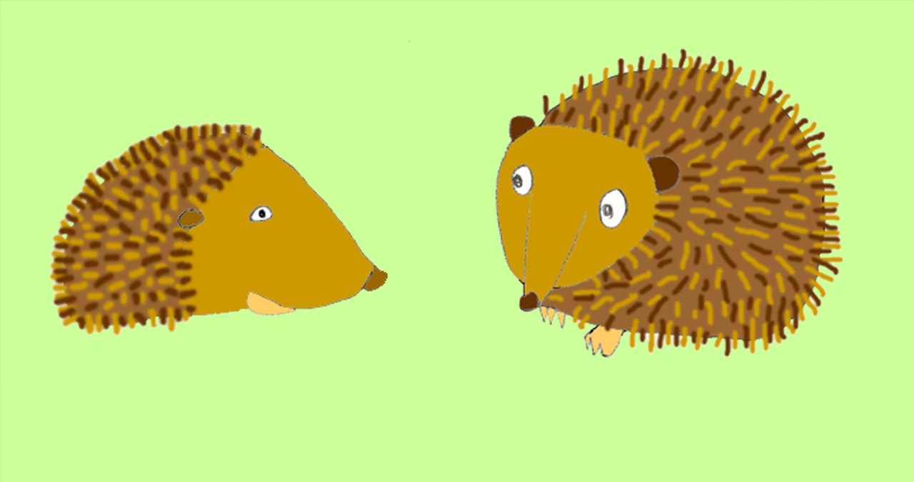 Two happy hedgehogs look at each other against a green background. A still from an animation called Prickly Pair.