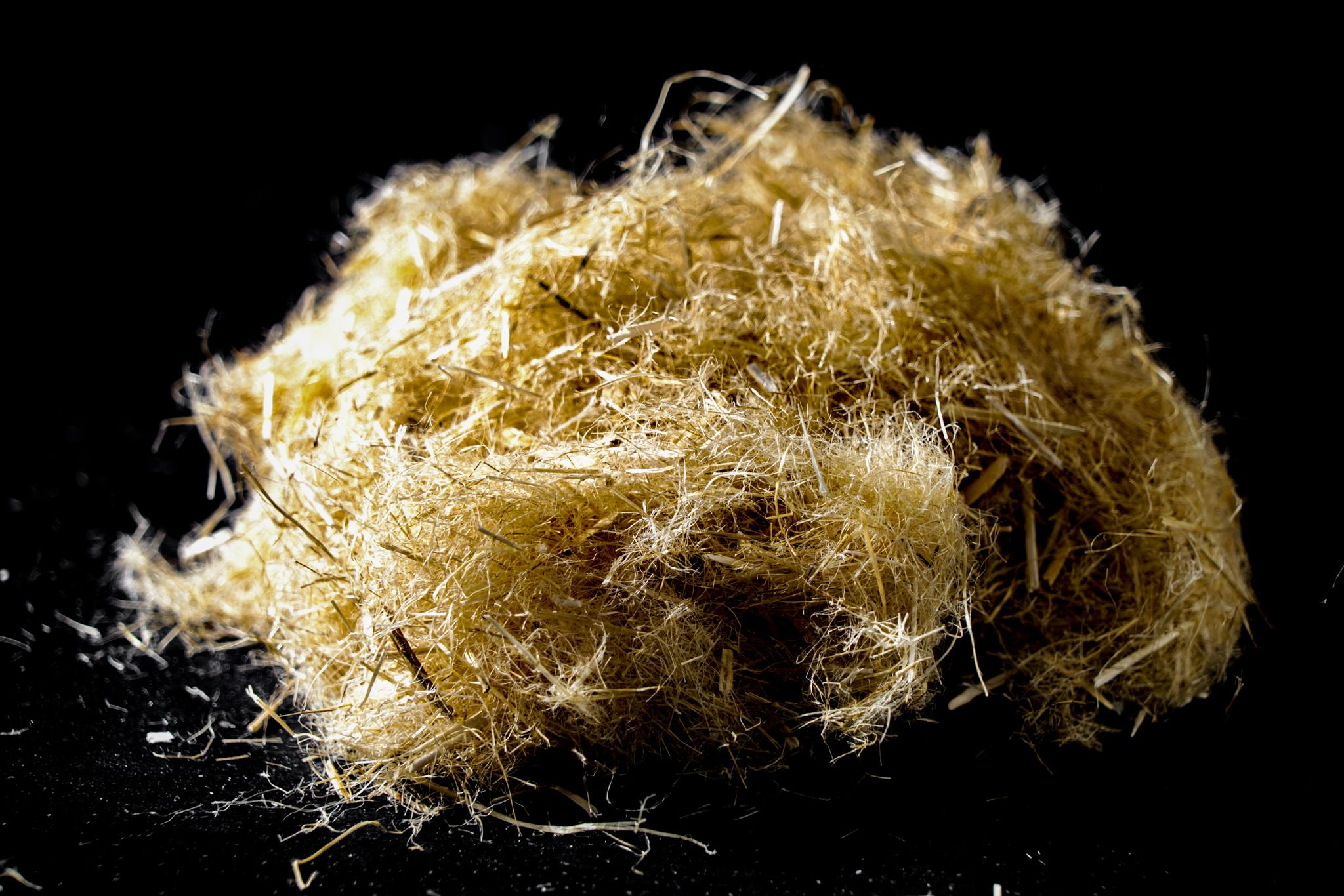 bast fibers.jpg