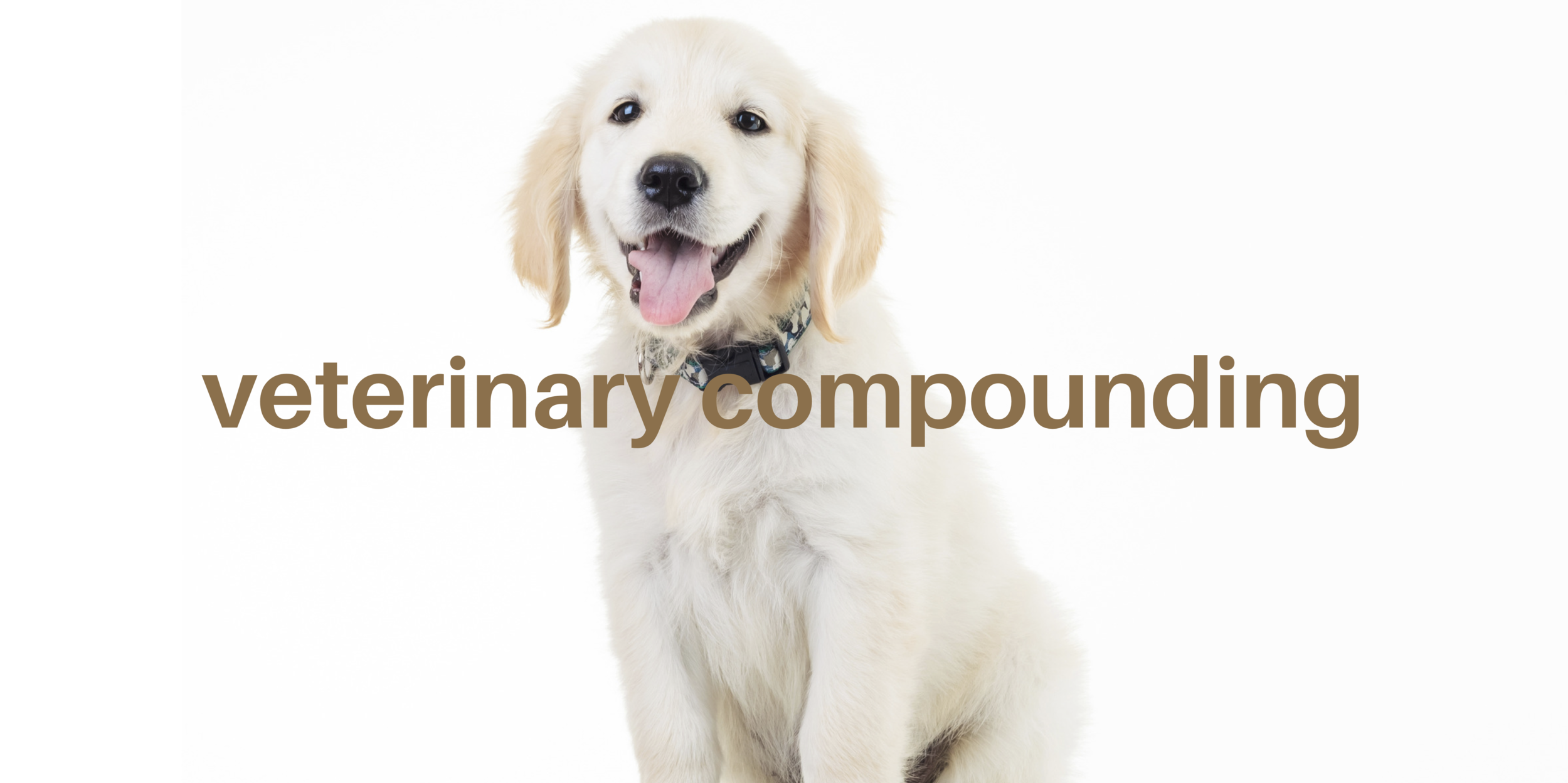 Compounding for your dogs, cats and pets at Wellness Pharmacy of Cary
