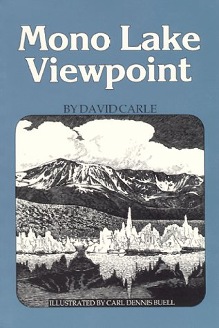 mono lake viewpoint amazon.jpg