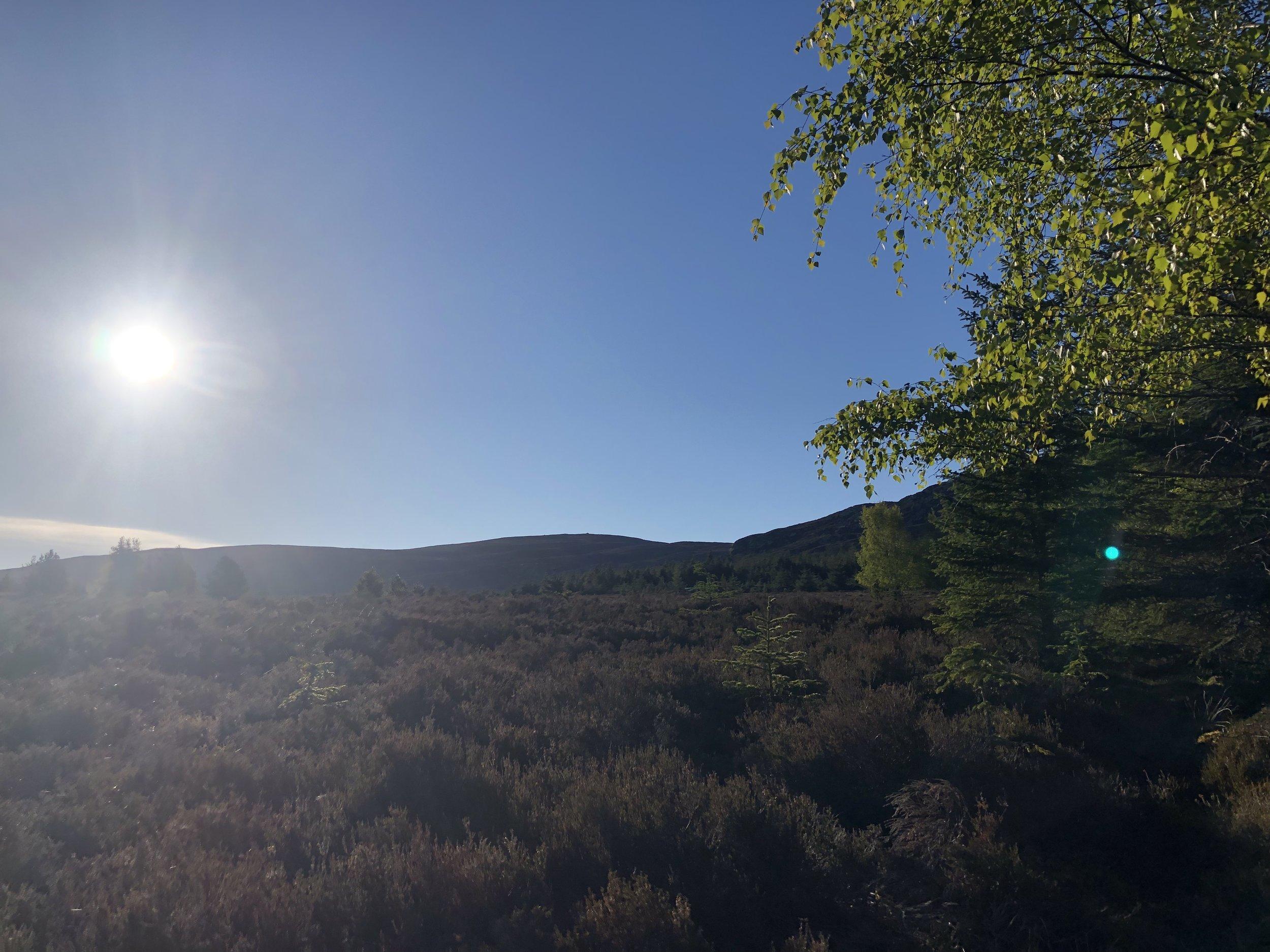 looking up to Beinn dubh and beinn nan cailleach - bird song and blue skies