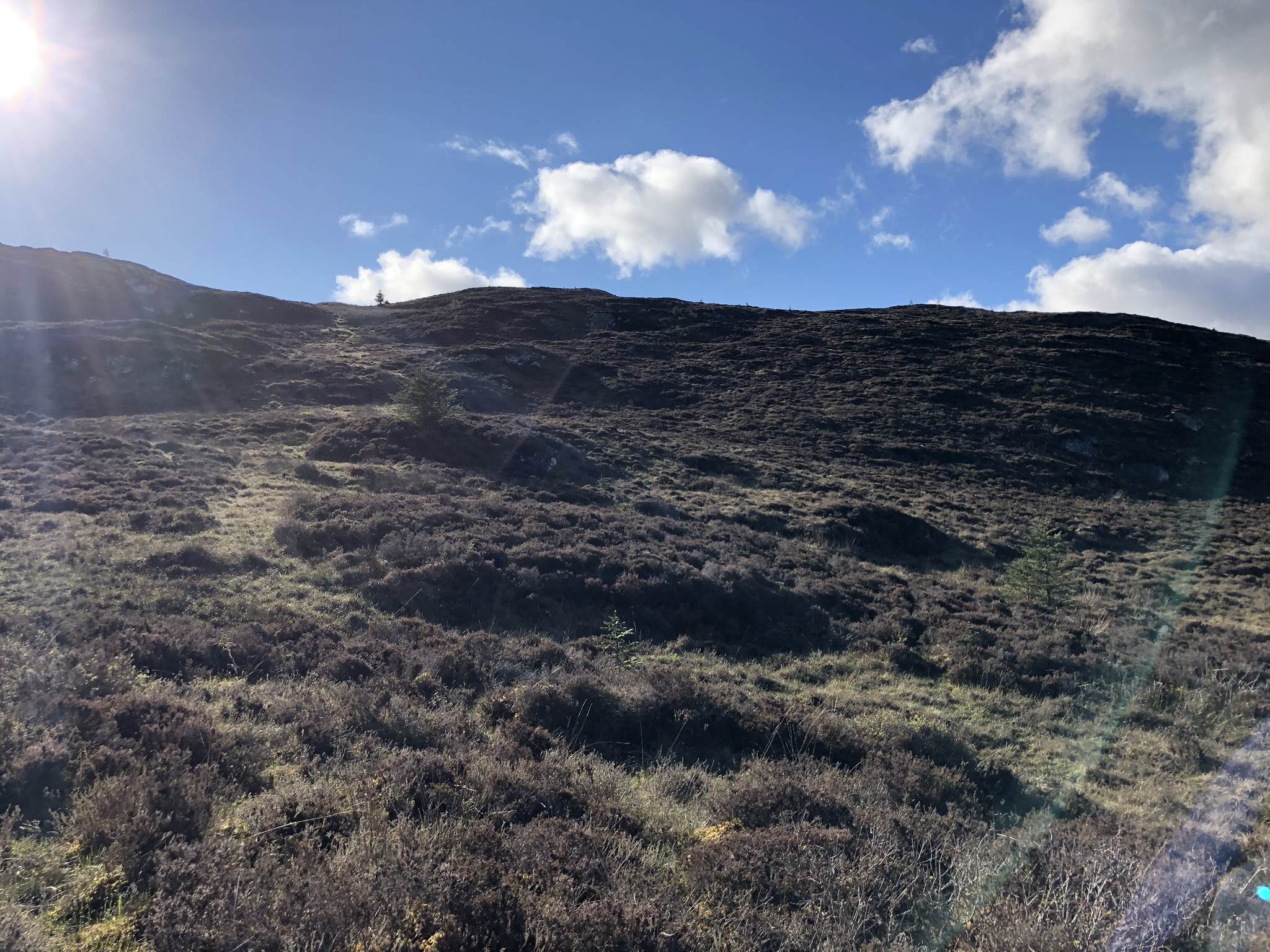 an Old pony track up to the Sealbhanaich by Allt an Lòin Uaignich (OS place name book - burn of the secret or lonesome morass)
