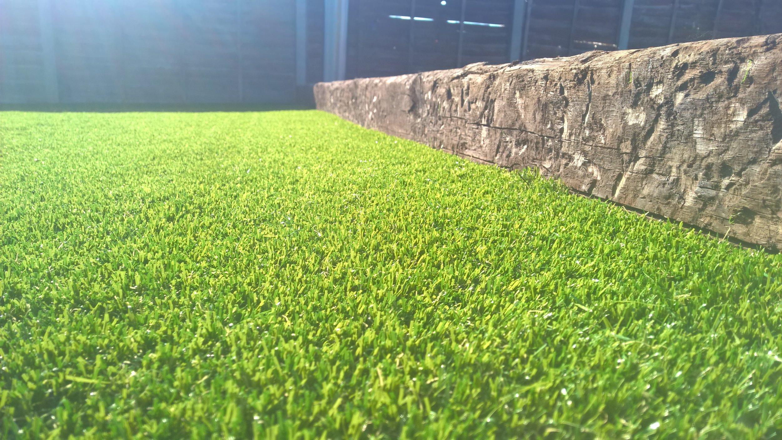 grass_closeup.jpg