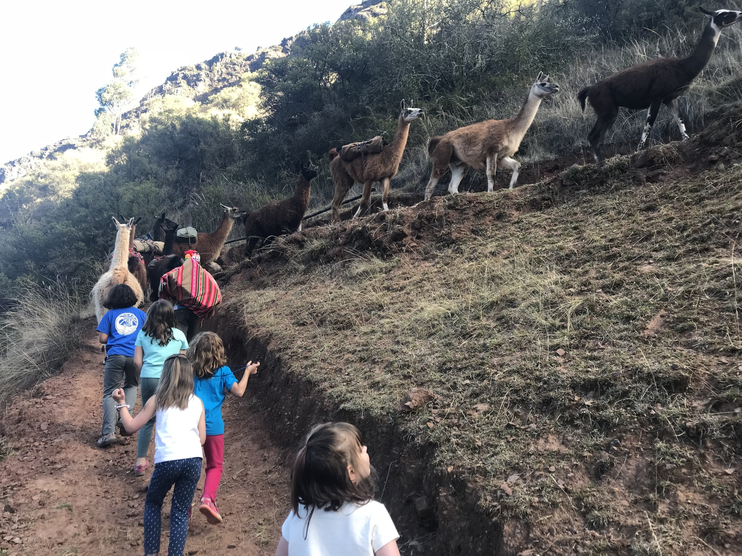 Trekking with the llama pack project on our moms and daughters trip.JPG