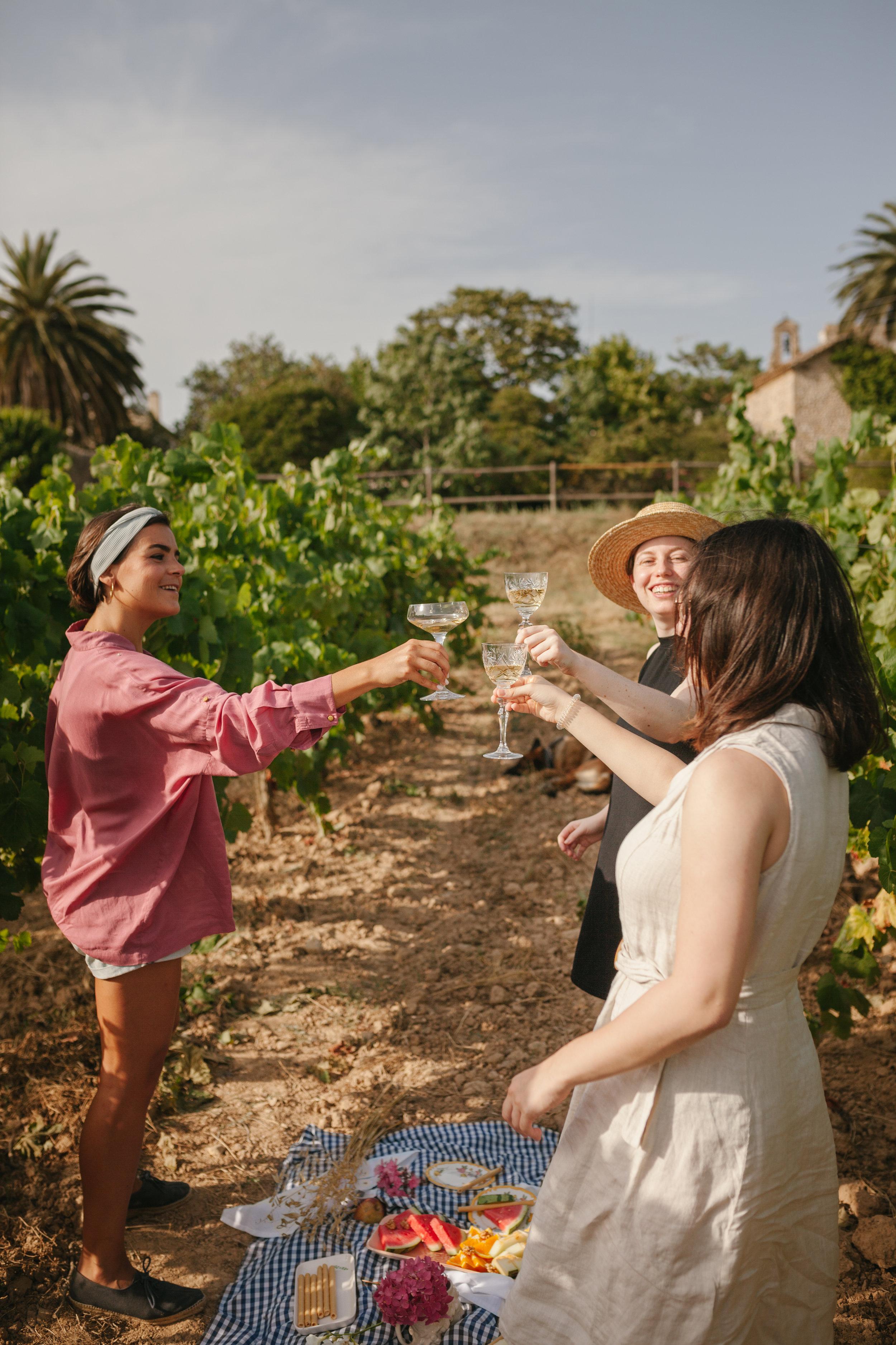 Tres chicas brindando con vino en un viñedo