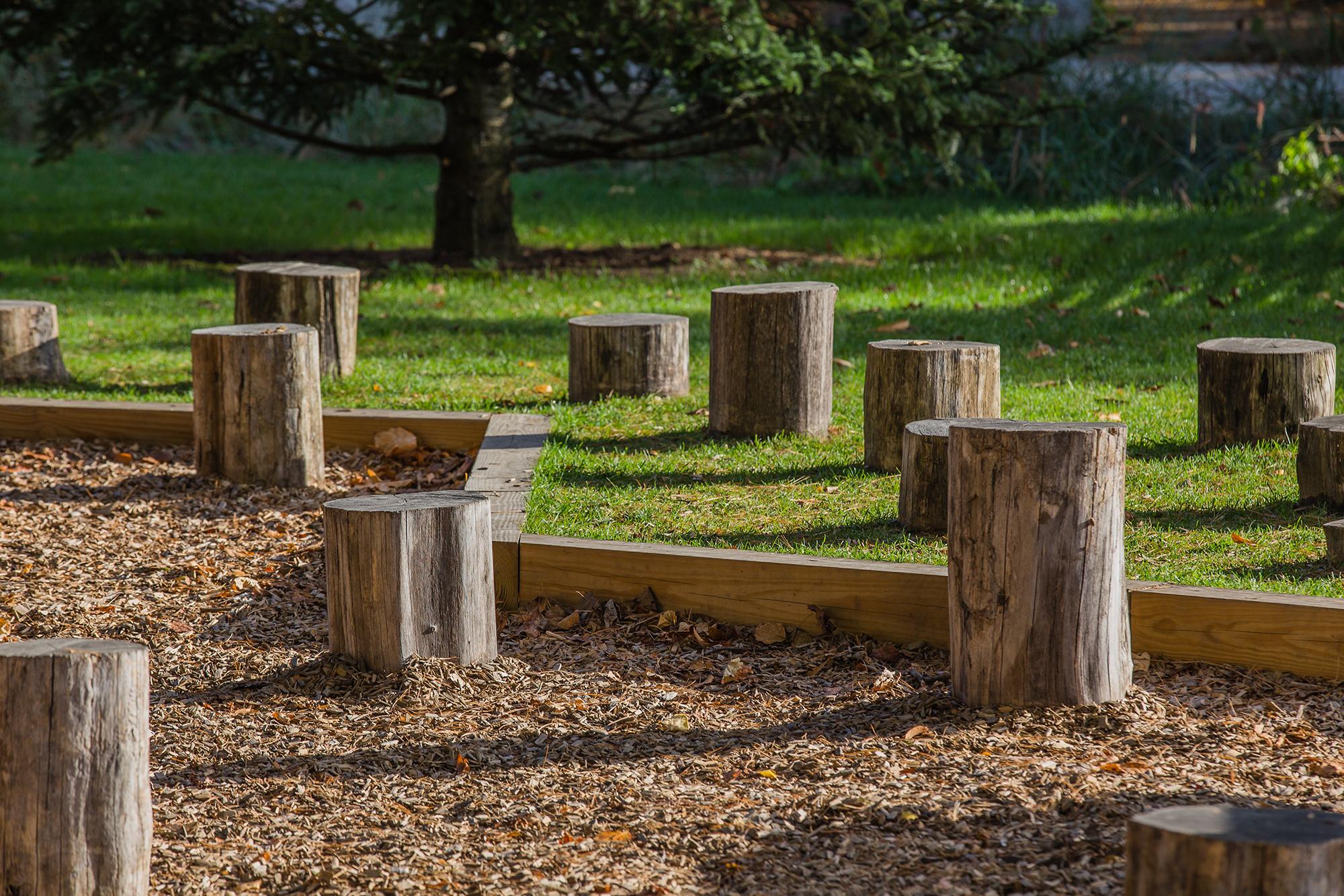 Black Locust  Logs Pulaski Park