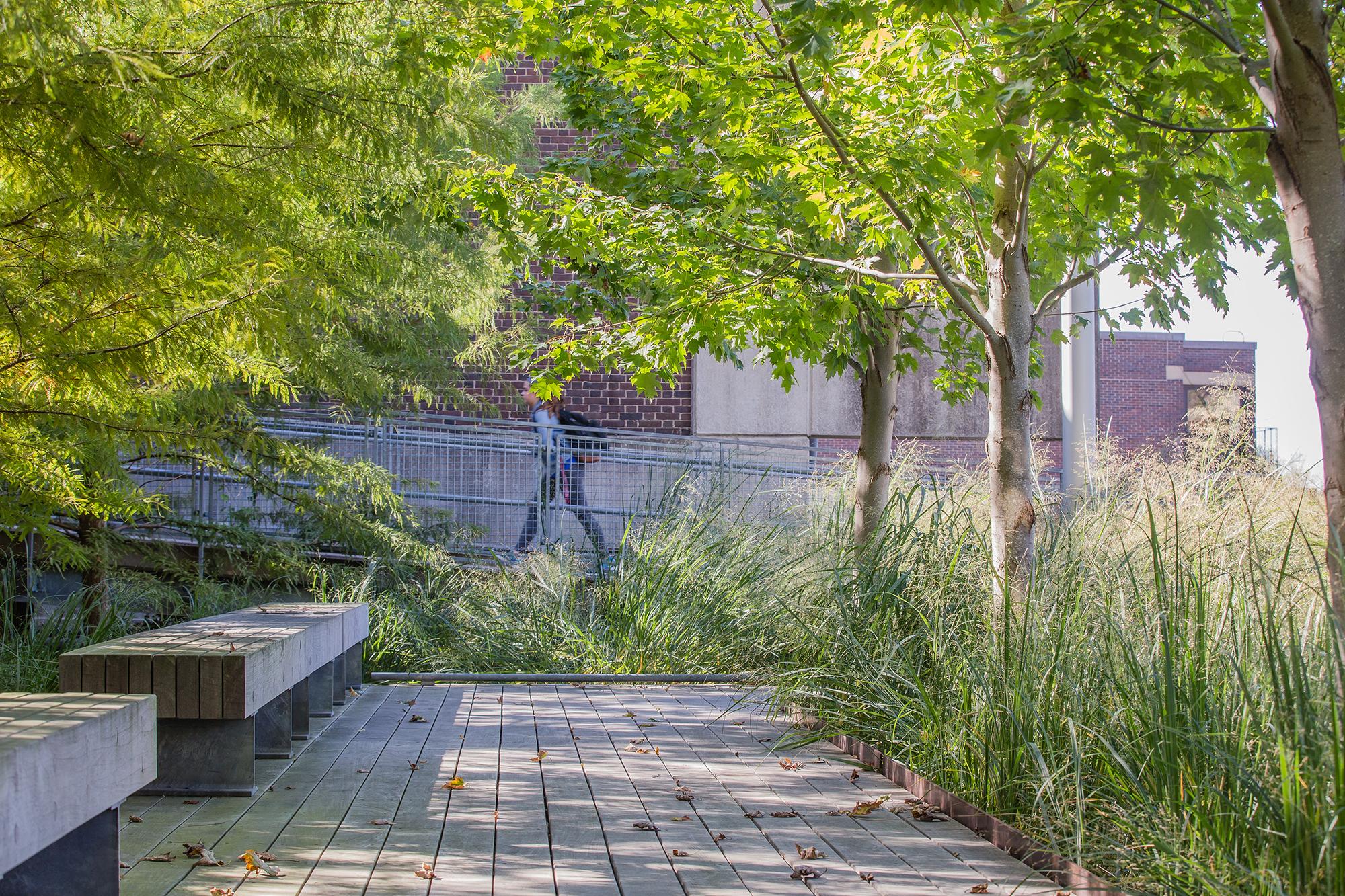 Ipe Decking University of Massachusetts Amherst