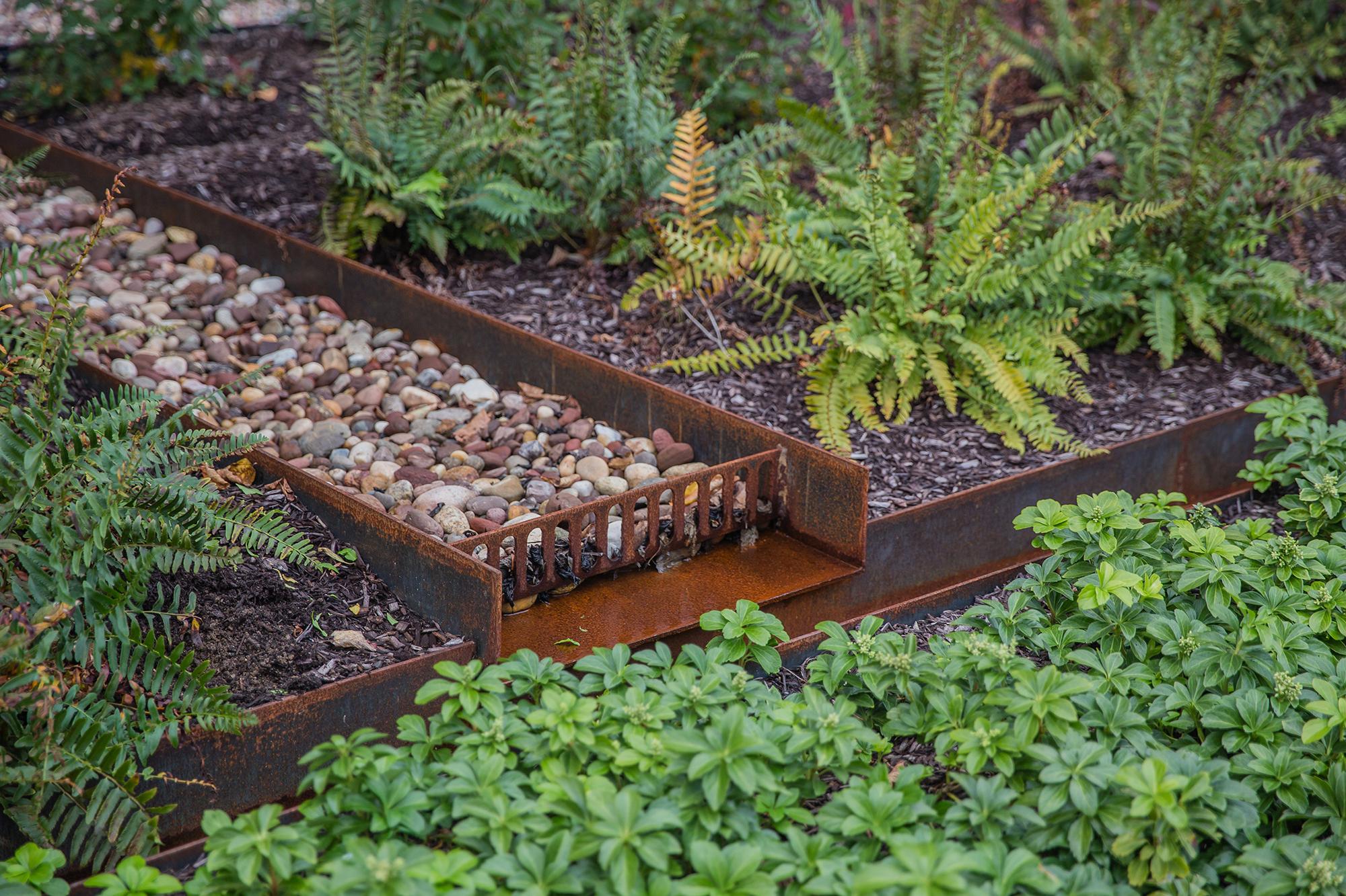 Sacred Heart Water 10.jpg