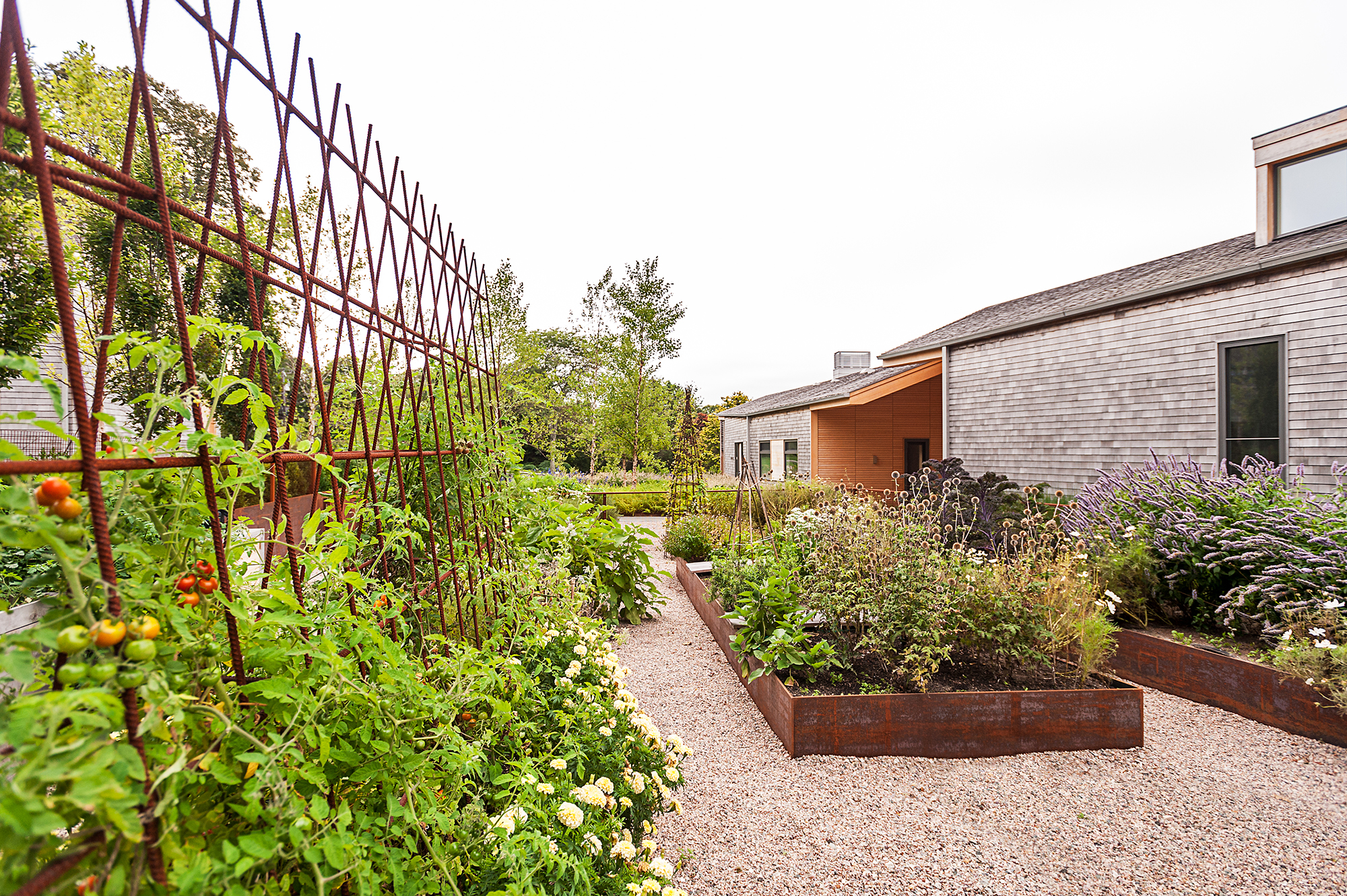 Vegetable Garden  Cove House