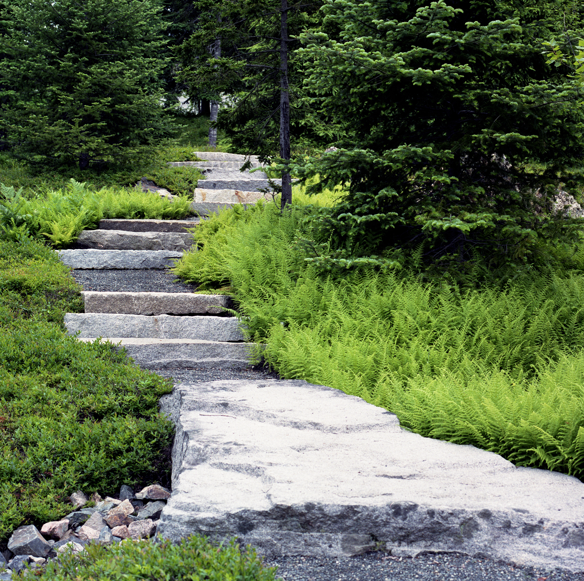 Granite Steps  Northeast Harbor Mount Desert, ME
