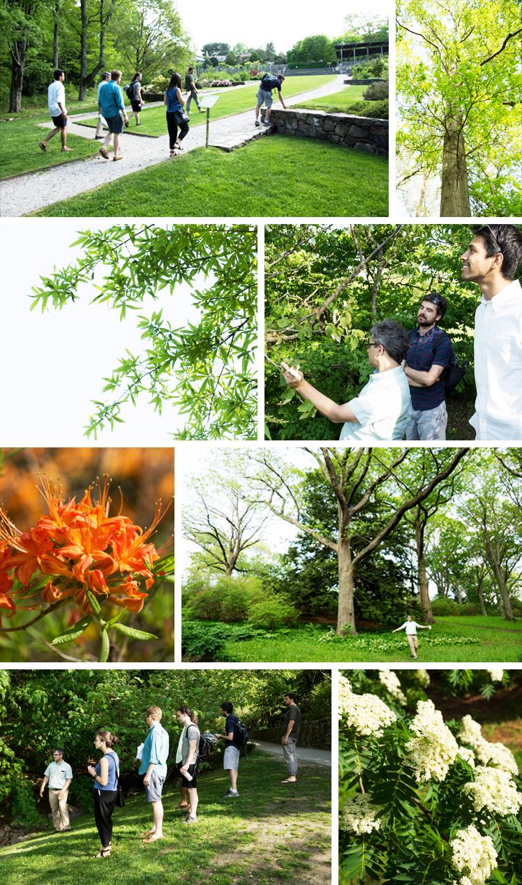 May Images - Arboretum.jpg