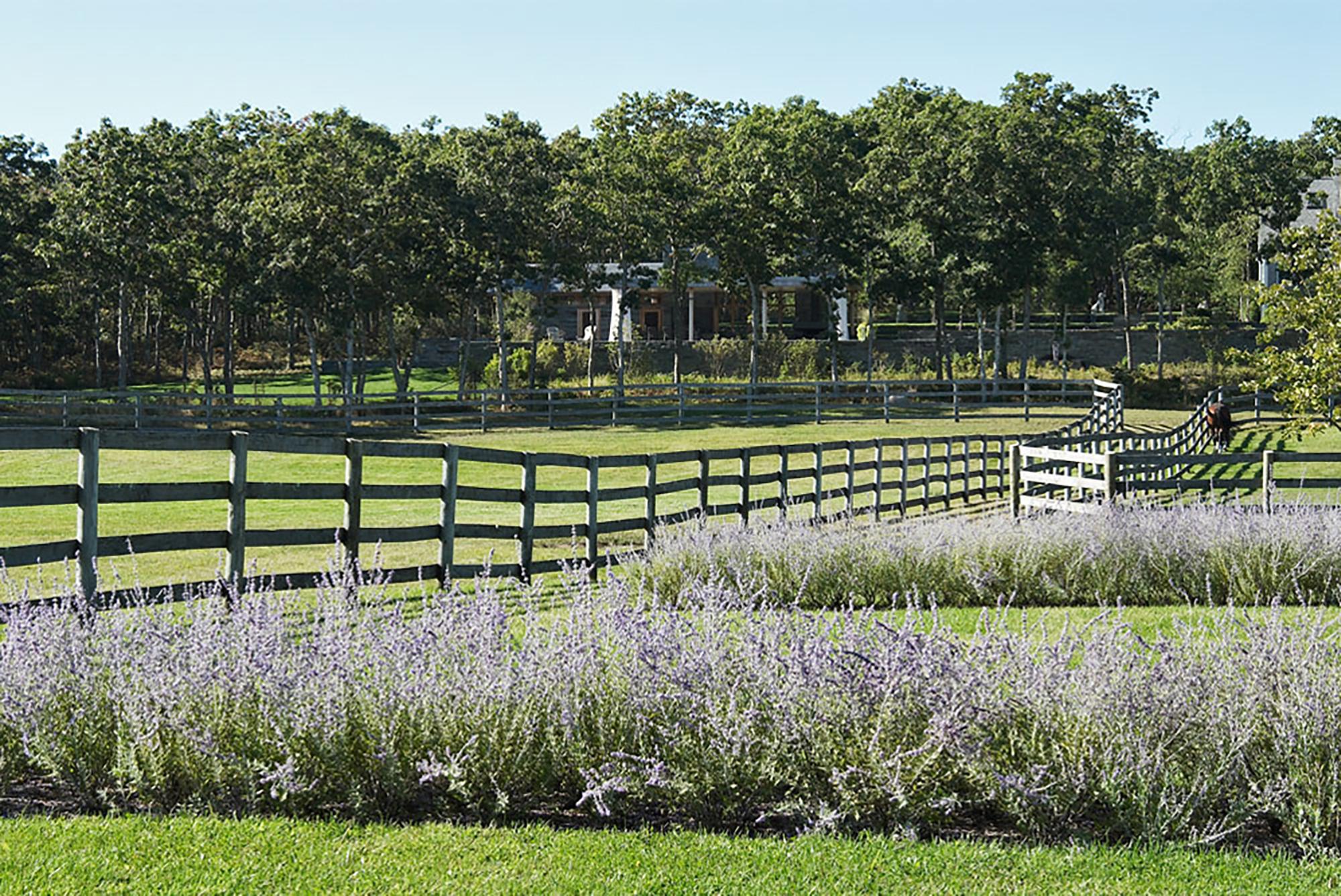 Willow Farm_3.jpg
