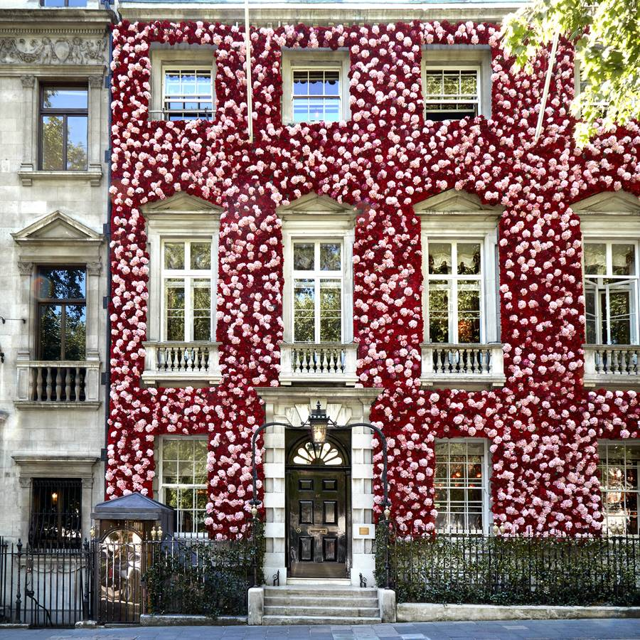 Annabel's in Berkeley Square is sprayed with pink and red hydrangeas.