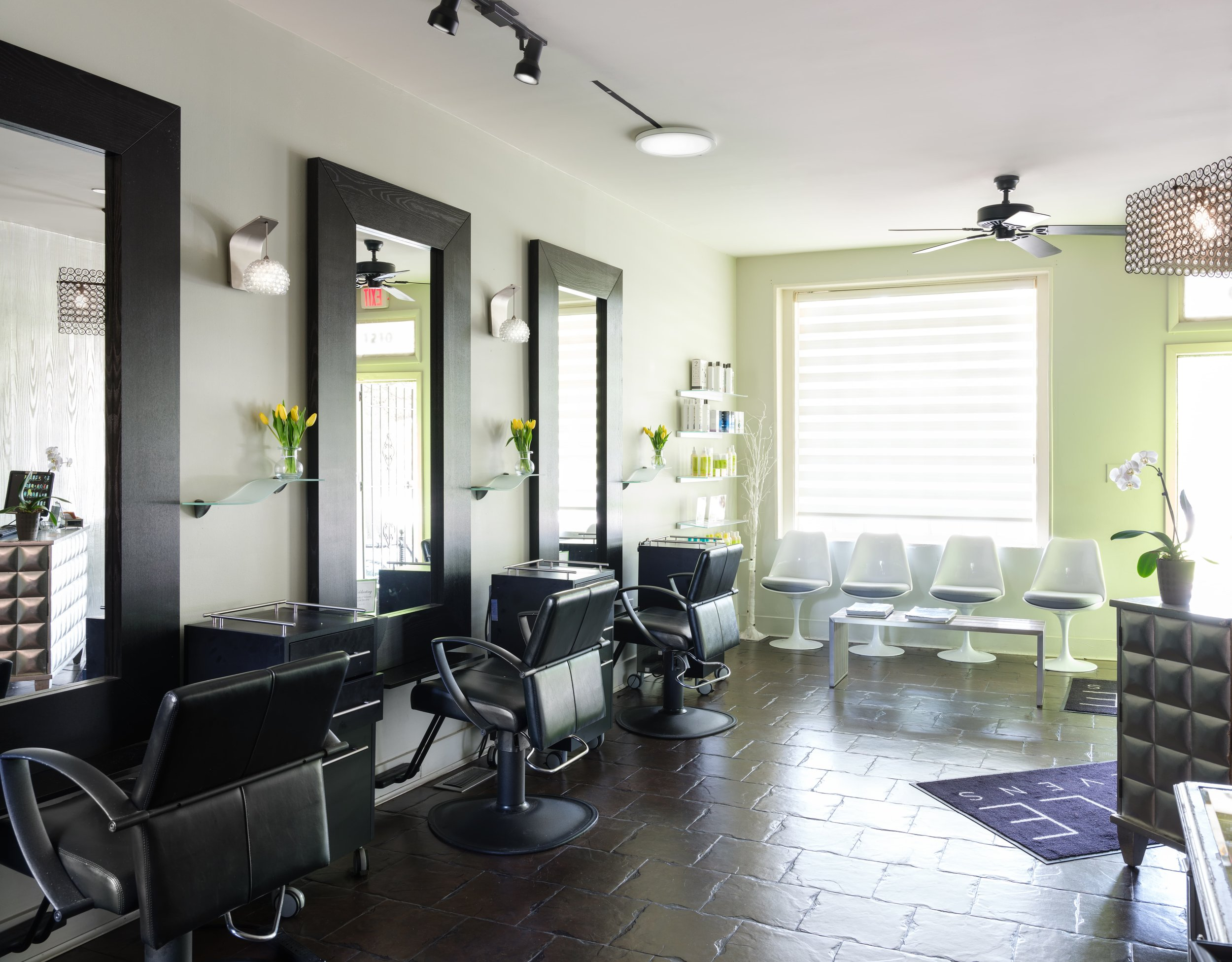 Capital Hill, DC Salon -