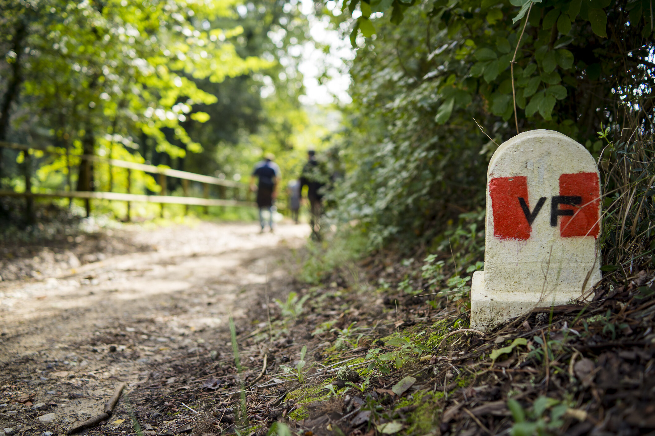 The Via Francigena - The Via Francigena, the medieval pilgrimage route that in the Middle Ages connected the English city of Canterbury, through Switzerland and France, to Rome, runs next to the walls of Capranica and still today is visited by many pilgrims and wayfarers.