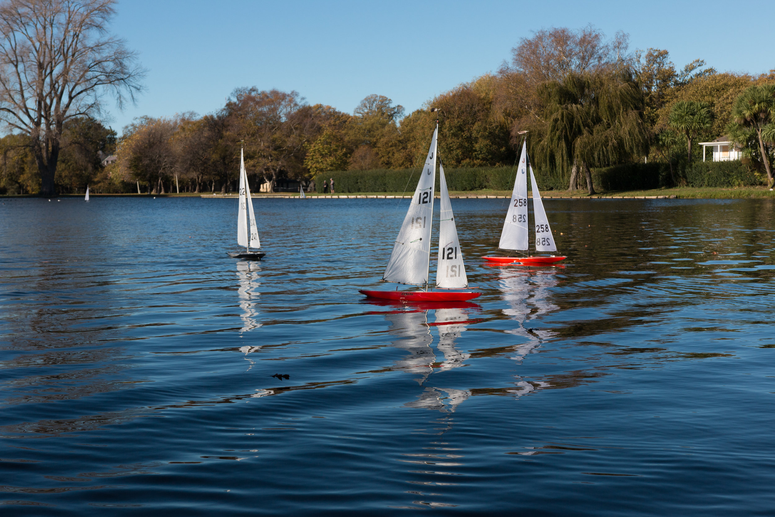 The Sailboat.jpg