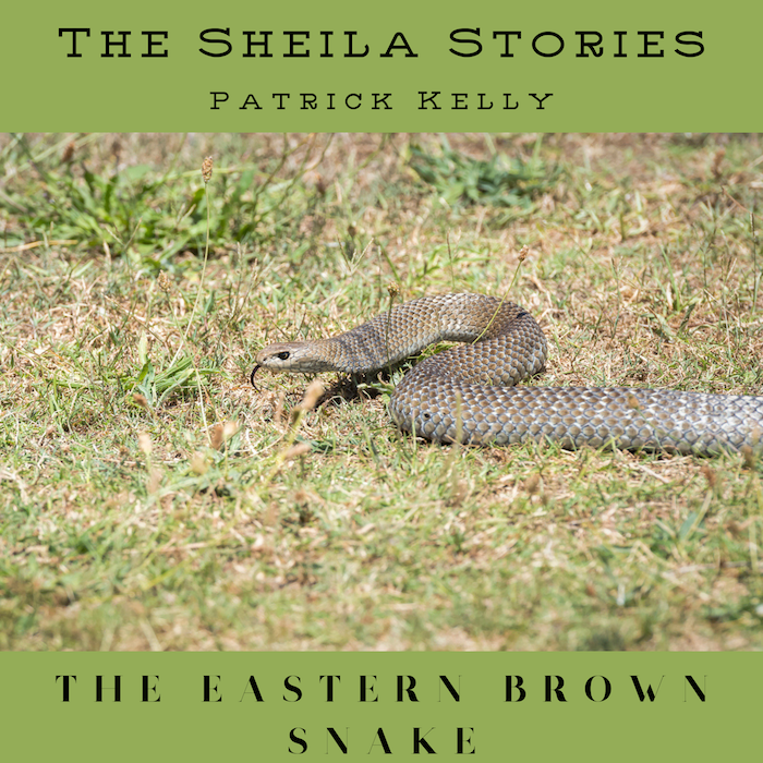 SS EP03 Small The Eastern Brown Snake Cover.png
