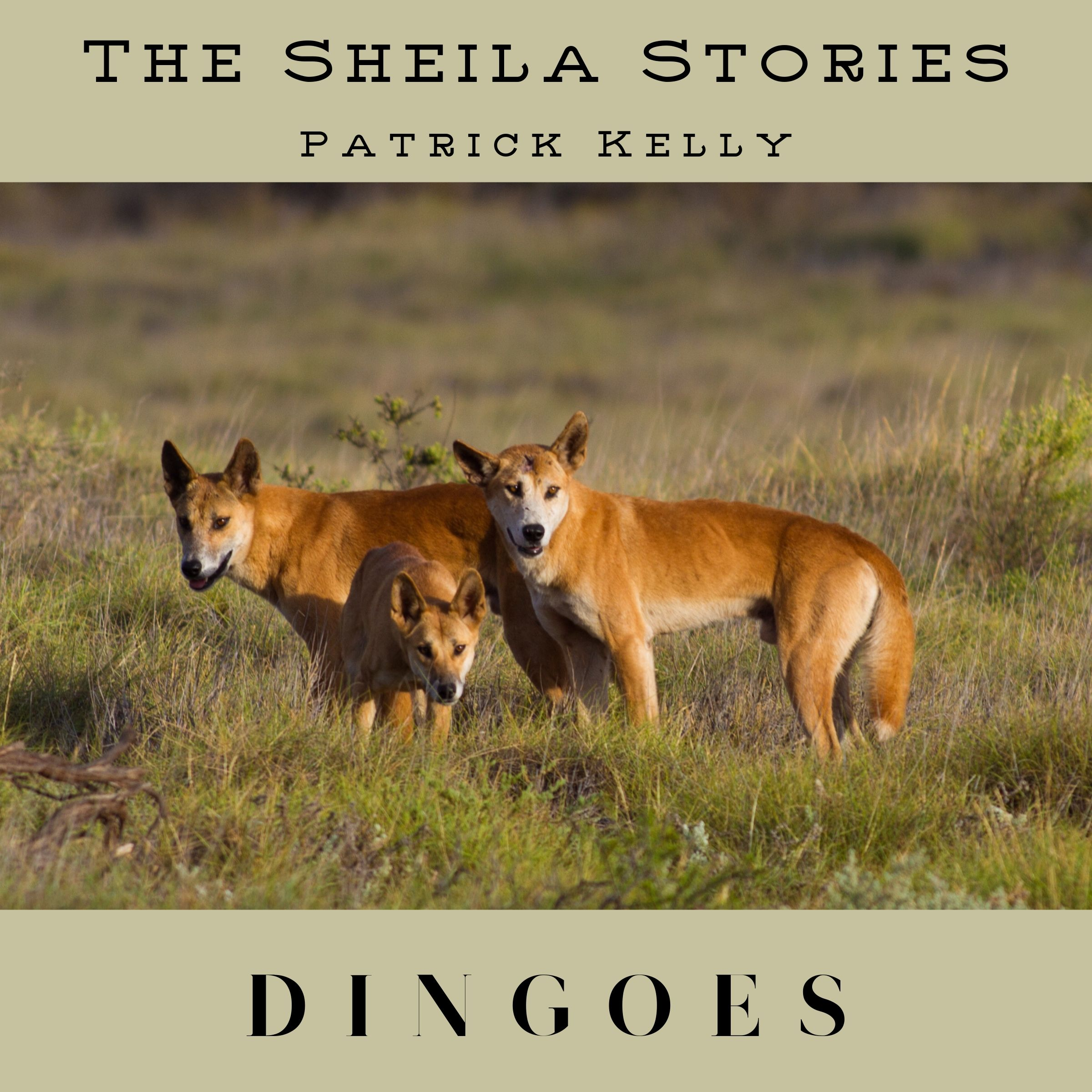 SS Cover EP05 Dingoes Small.jpg