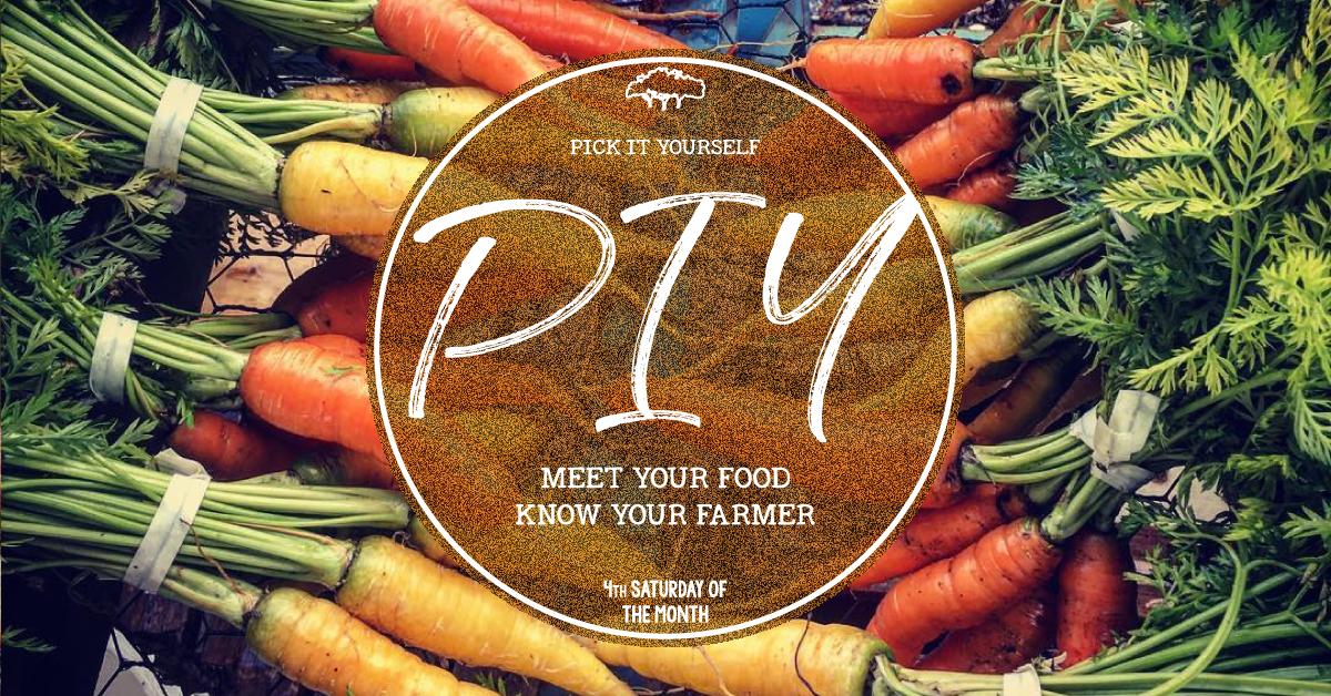 PIY-Facebook-Event-Banner.png