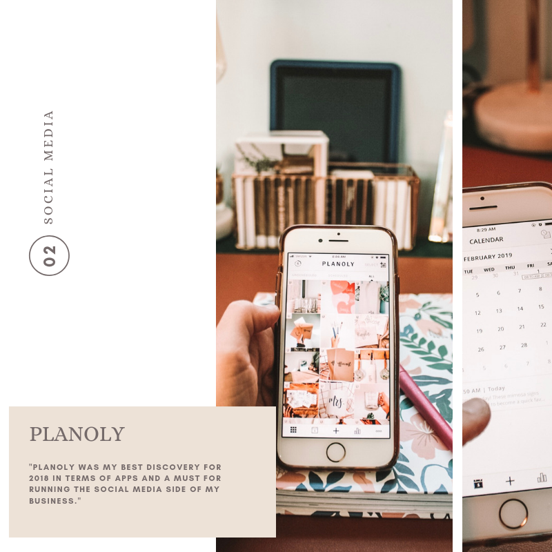 Planoly_creative business_palms and paper