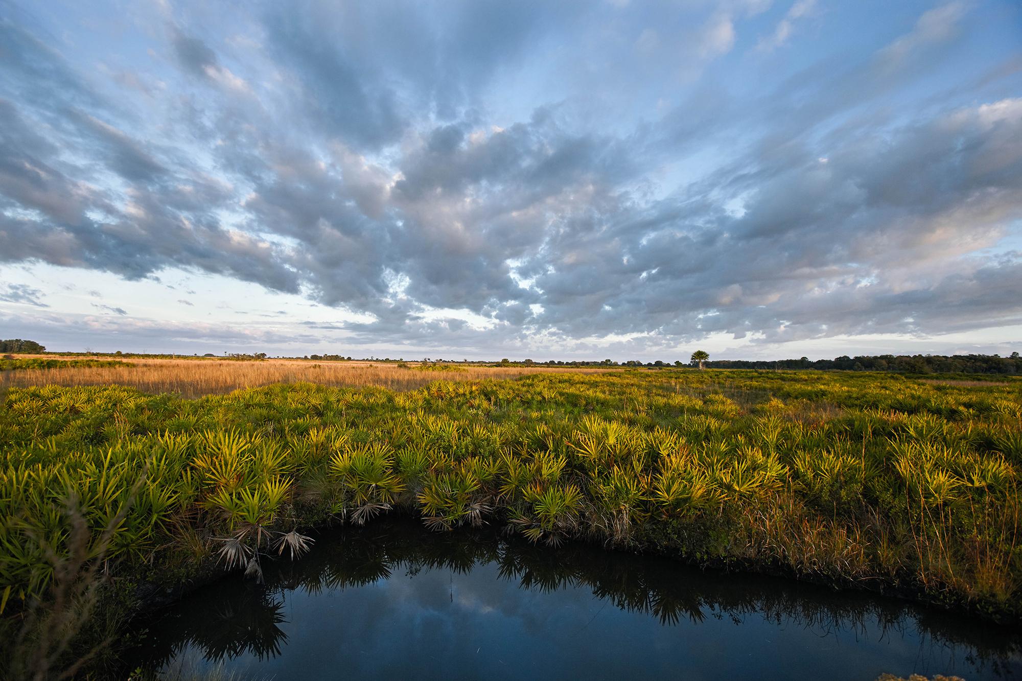 Adams Ranch, Photo by Randy Batista