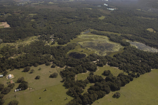 One of Conservation Florida's ongoing projects: Triple S Ranch