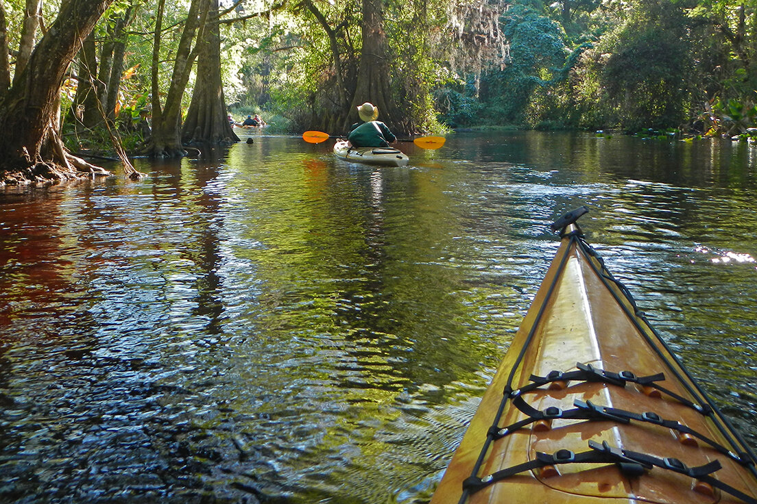 Kayakers paddle Arbuckle Creek. Photo by Don Yackel.