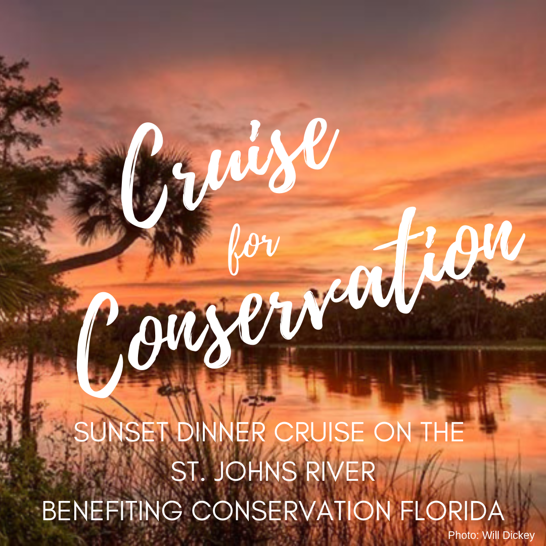 Cruise for ConservationSocialSquare.png